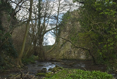 Merging Streams (Chris Noble Photography) Tags: river landscape other misc places naturalhistory northwales dyserth riverscene photogenre