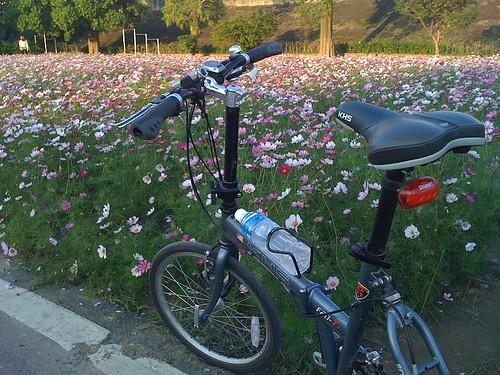 古亭河濱公園自行車道