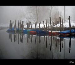 Colors in the fog (alfvet) Tags: nikon fiume 1001nights reflexions breathtaking vigevano d60 blueribbonwinner parcodelticino abigfave anawesomeshot aplusphoto flickraward diamondclassphotographer flickrdiamond platinumheartaward betterthangood goldstaraward flickrestrellas veterinarifotografi nikonflickraward artistictreasurechest flickrcinated platinumpeaceaward magicunicornverybest magicunicornmasterpiece leuropepittoresque doubleniceshot tripleniceshot mygearandmepremium mygearandmebronze mygearandmesilver mygearandmegold mygearandmeplatinum mygearandmediamond aboveandbeyondlevel1 aboveandbeyondlevel2 rememberthatmomentlevel4 rememberthatmomentlevel1 rememberthatmomentlevel2 rememberthatmomentlevel3 rememberthatmomentlevel7 rememberthatmomentlevel9 rememberthatmomentlevel5 rememberthatmomentlevel6 rememberthatmomentlevel8 rememberthatmomentlevel10