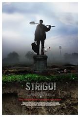 strigoi_xlg