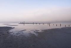 Floodgates (stager57) Tags: wood fog utah mud greatsaltlake posts mudflats gsl clearingfog
