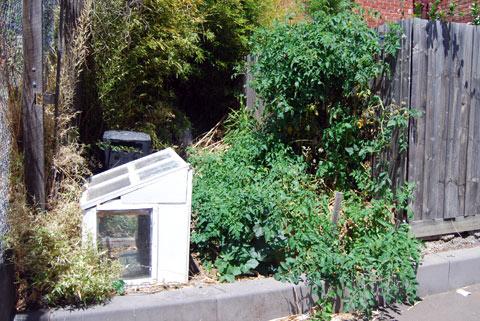 Guerilla Garden, Melbourne