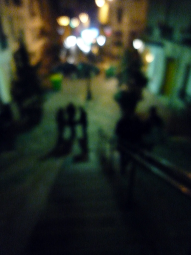 28_janvier_2009_flou_P1010415