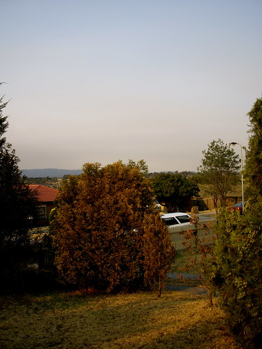 Evening light with bushfire smoke