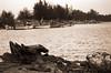 Remains of a boat (58830021) (Fadzly @ Shutterhack) Tags: blackandwhite bw film monochrome analog noiretblanc malaysia terengganu blancinegre fujisuperia200 kualaterengganu my leicar6 fadzlymubin shutterhack leitzwetzlar90mmf28