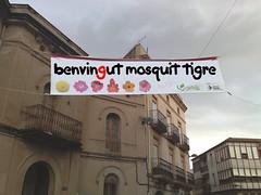 Benvingut Mosquit Tigre