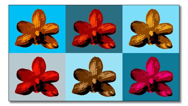 Orkideer-till-Warhol