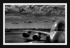 A380 (Shane Hicks) Tags: a380 5photosaday