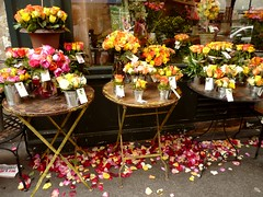 Paris is a rose (manu/manuela) Tags: flowers roses paris france rose fleurs romance sidewalk florist fiori trottoir parigi fleuriste romantique 16e aunomdelarose avenuemozart paris16e