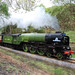 60163 on it's way to Goathland
