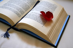 like an open book... with a heart as bookmark (oriana.italy) Tags: orianaitaly heartasbookmark