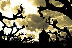 Monstery (Enrique Pellejer) Tags: monasterio monastery monstruo monster veruela cielo sky black yelow dark fear cross cruz d60