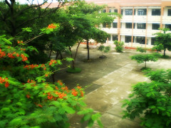 4 (pinky_pinky09) Tags: beloved skul
