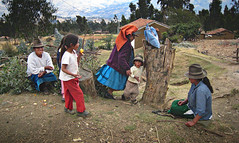 IMG_0415 (Paria, Ancash, Peru) Photo