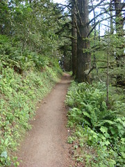 Whittemore_Gulch_Trail-26