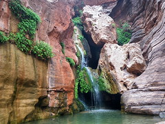 Elves Chasm - Grand Canyon (Al_HikesAZ) Tags: park county arizona water waterfall nationalpark whitewater 500v20f hiking grandcanyon grand canyon hike rafting national coloradoriver azra chasm elves coconino inthecanyon  grandcanyonnationalpark coconinocounty gcnp innergorge  azwexplore alhikesaz elveschasm azwwaterfall   gc2009 arizonaraftadventures tentbelowtherim gregmcfadden