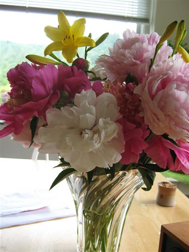 kitchen peonies