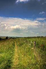 Walk With Me (gracust) Tags: sky field grass clouds fence landscape walk bedfordshire poppies breathtaking ih bartonhills breathtakinggoldaward