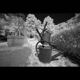 Friedhof Connewitz l cementry Connewitz