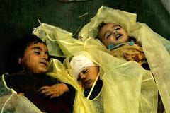 DEATH TO TERRORISTS (Julie™) Tags: army israel war strip terrorism gaza gazza terrorit