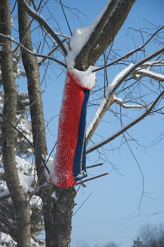 Yarn Bomb Evidence