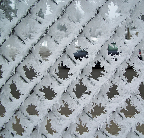 Spiky frost fence (dark background)