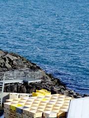 pale-yellow and deep-blue (Winfried Veil) Tags: ocean sea nature landscape island iceland rocks meer veil harbour natur container hafen landschaft winfried felsen snaefellsnes hellnar mobilew mowen winfriedveil