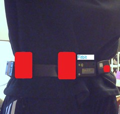 Device Test Belt