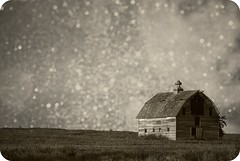 Aged Barn on a Starry Night (laughlinc) Tags: texture barn photoshop nebraska omaha aged starry nikond80 goldstaraward ishkamina thechallengefactory laughlinc