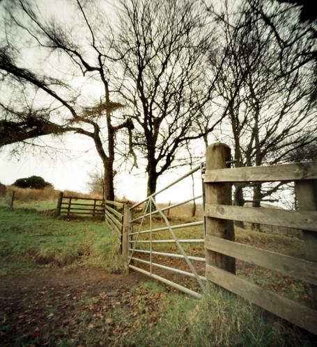 Gate a trees Fairlie Agfa Billy pinhole image 06Mar09