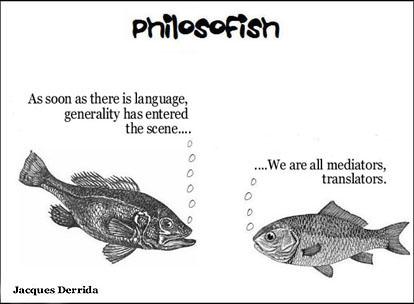 philosofish 5 small