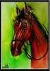 بالالوان - لوحة الخيل (almohammada) Tags: لوحة الخيل بالالوان