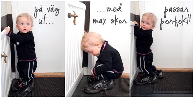 max skor