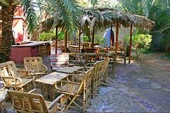 (774) Oasis Siwa (unicorn 81) Tags: voyage africa travel color sahara trekking geotagged hotel sand colorful desert northafrica egypt adventure oasis egyptian egipto 2009 gypten egitto datepalm excursion egypte reise egypten rundreise roundtrip egipt gypte mapegypt misr nordafrika egypttrip siwaoasis april2009 gypten aegyptus  gyptusintertravel gyptenreise schulzaktivreisen meinjahr2009