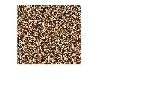 3483960649_54db65709b.jpg?v=0
