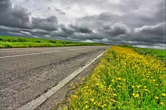storm above tuscany country   ........ (paolo brunetti) Tags: road above street storm verde green water rain yellow landscape strada italia village country campagna giallo tuscany raining pioggia livorno paesaggio podere paese villaggio uragano paololivorno paololivornosfriends carerggiata