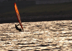 Windsurfing on the river Yodo