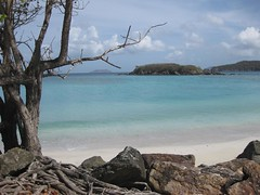 Cinnamon Bay Beach