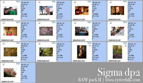 DP2 Raw pack 2