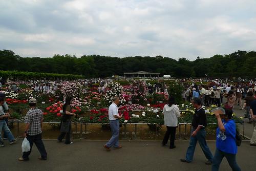 Jindai Park