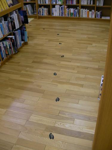 Deer's tracks in library
