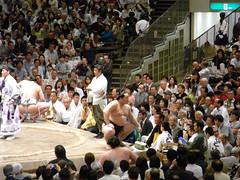 日馬富士 画像76