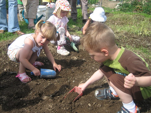 Aidan, Sophia and Gracie digging the holes for their pumpkin starts