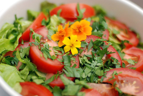 Field greens with tomatoes, parsley, and Mexican Gems