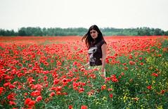 Poppy Field (Gatis Orlickis) Tags: woman film 35mm poppy poppyfield campodeamapolas snoupy ponka