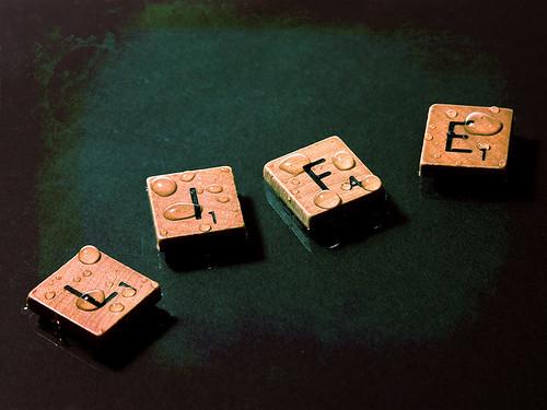 http://farm4.static.flickr.com/3314/4574733303_c568605333.jpg