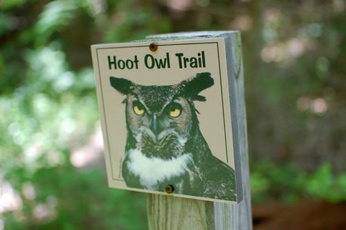 hoot owl trail