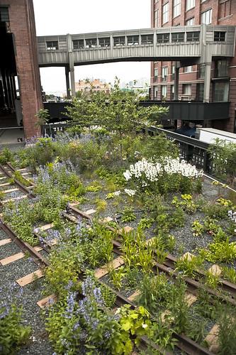 High Line D11
