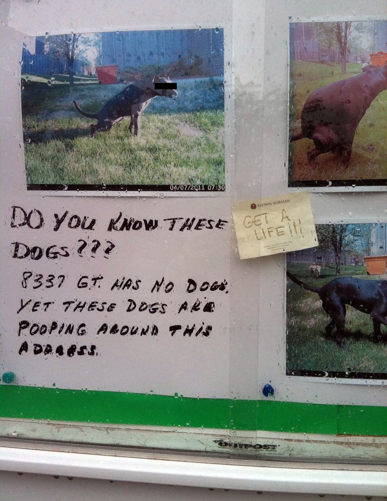 DO YOU KNOW THESE DOGS??? 8337 GT. HAS NO DOGS YET THESE DOGS ARE POOPING AROUND THIS ADDRESS. [Response:] GET A LIFE!!!