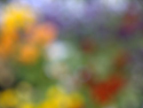 1000/477: 12 June 2011: Focus - who needs it? by nmonckton